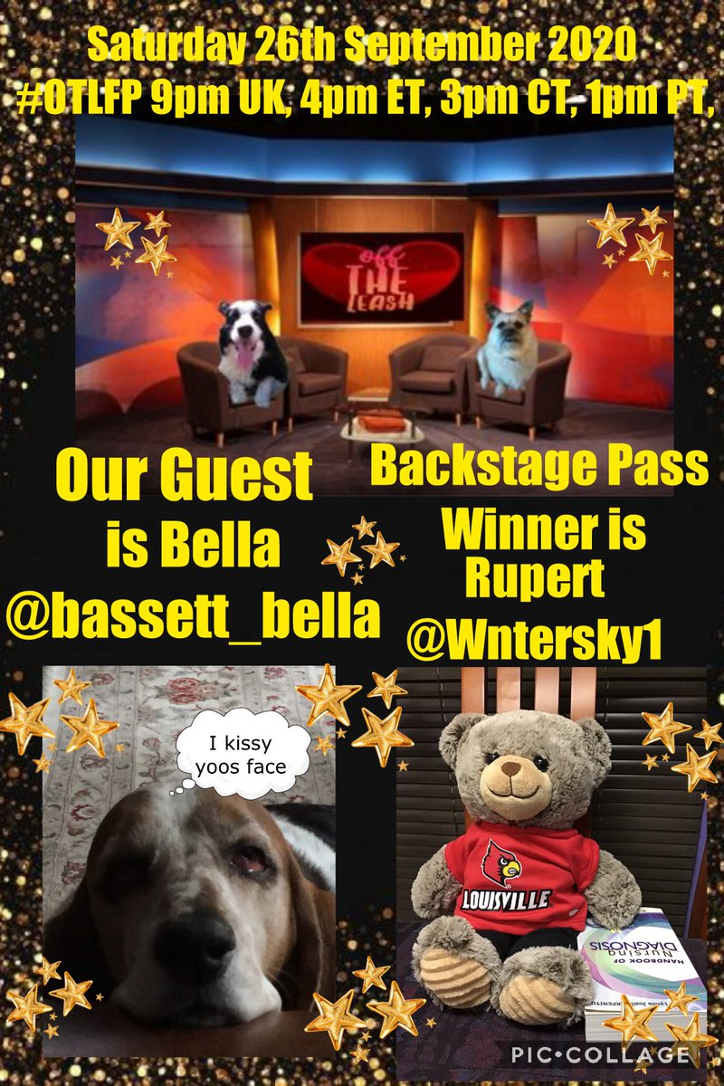 BREAKING NEWS!  Attention please Our Guest fur @OffTheLeashFP #OTLFP on Saturday 26th September is  Bella @basset_bella  Backstage Pass Winner is  Rupert @Wntersky1 Come along & Join the fun 9pm UK 4pm ET 3pm CT 1pm PT Search🔎#OTLFP to join in & follow the show https://t.co/MlAznnQuij