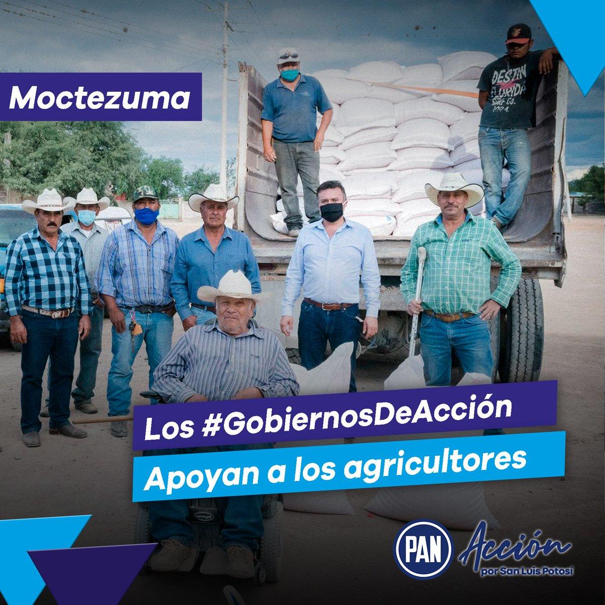 Un buen gobierno entienda las necesidades de su gente 👍👏  En Moctezuma nuestros #GobiernosDeAcción apoyaron a las y los agricultores del municipio, demostrando la importancia que tienen 🙌🔵 https://t.co/ePuQNHwEJH