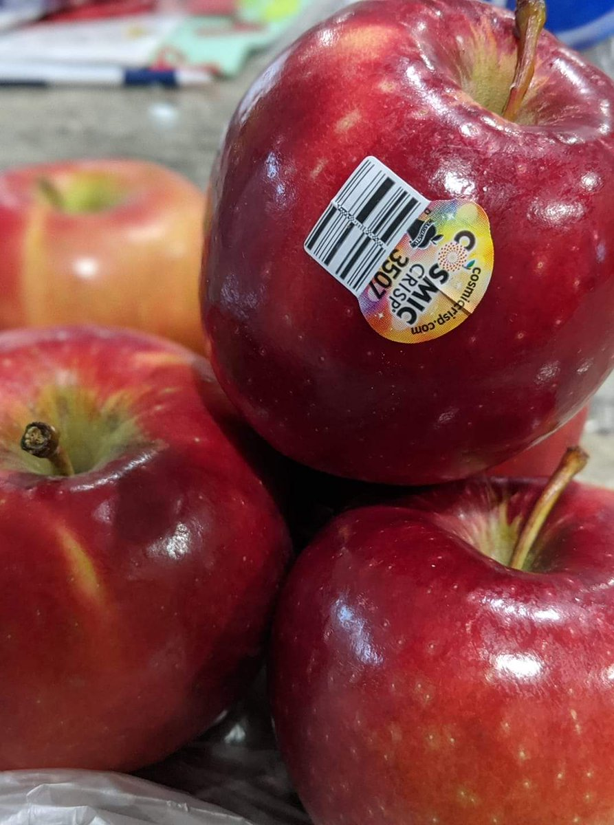 I really like #HoneyCrisp apples, but I'm really looking forward to when it is #CosmicCrisp season. I've been dreaming about them since February/March. https://t.co/vUbY70ar3v