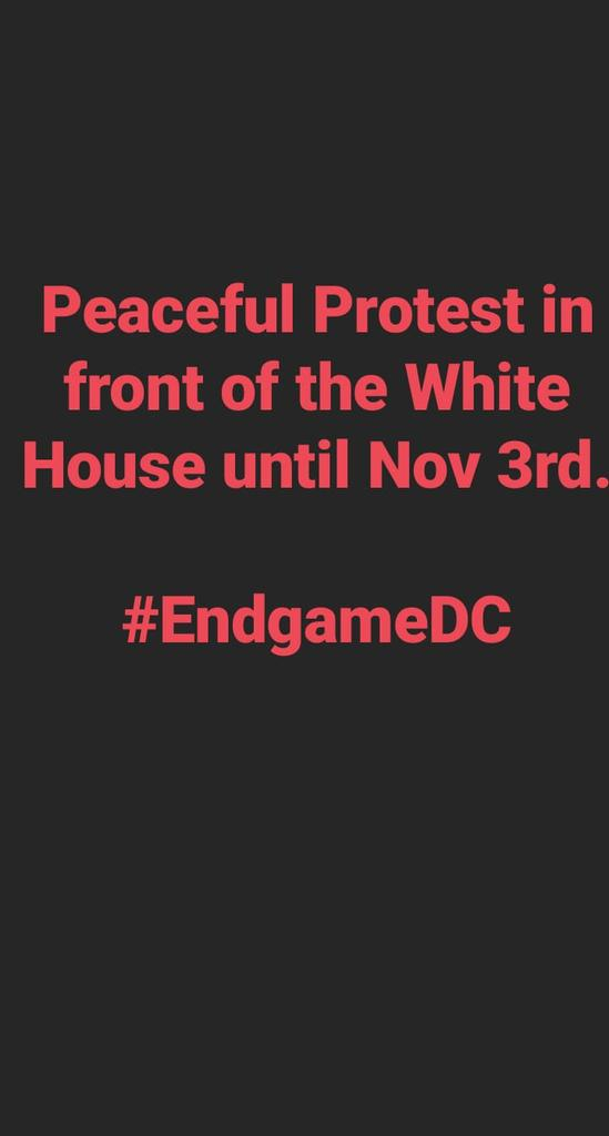 #Endgamedc SPREAD THE WORD #dcprotest #DCProtests #WhiteHouse #BLMprotest https://t.co/d0hsECAkUu