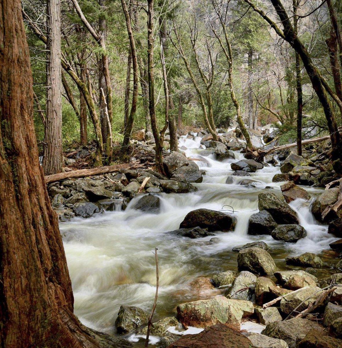 Bridalveil Creek Todays California Photo! - by Remesh Hedge https://t.co/Zjsm9HYToI
