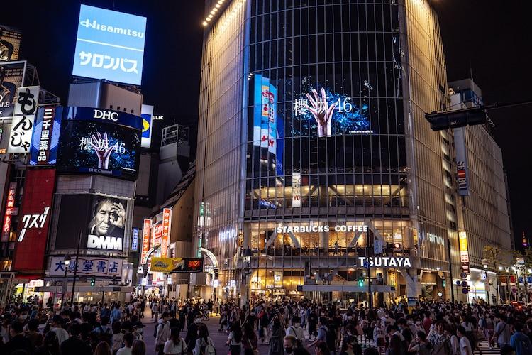 欅坂46、新グループ名は「櫻坂46」菅井友香「この名に恥じないような誇り高いグループになりたい」(写真5枚 / コメントあり) #欅坂46