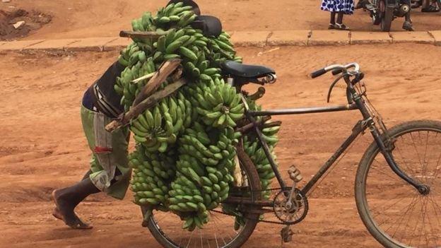 #Rwanda  #StateTerrorism  #FreeRusesabagina #FreeCyuma  #JusticeForKizito  #FreeAllPrisonersOfConscience  #MappingReport #JusticeForAll @WorldBank @IMFNews @AfDB_Group @PaulKagame #IvanKagame   Taxpayer.                      Beneficiaries. https://t.co/5S3T8ZtgPI