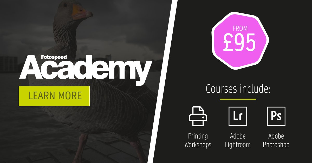 There is still room available for our virtual academy classes!  Gain valuable knowledge in printing, lightroom and photoshop!  👉 https://t.co/JuZl62iH2E  #lightroom #photoshop #printing #photography https://t.co/lKeUYfBCAe