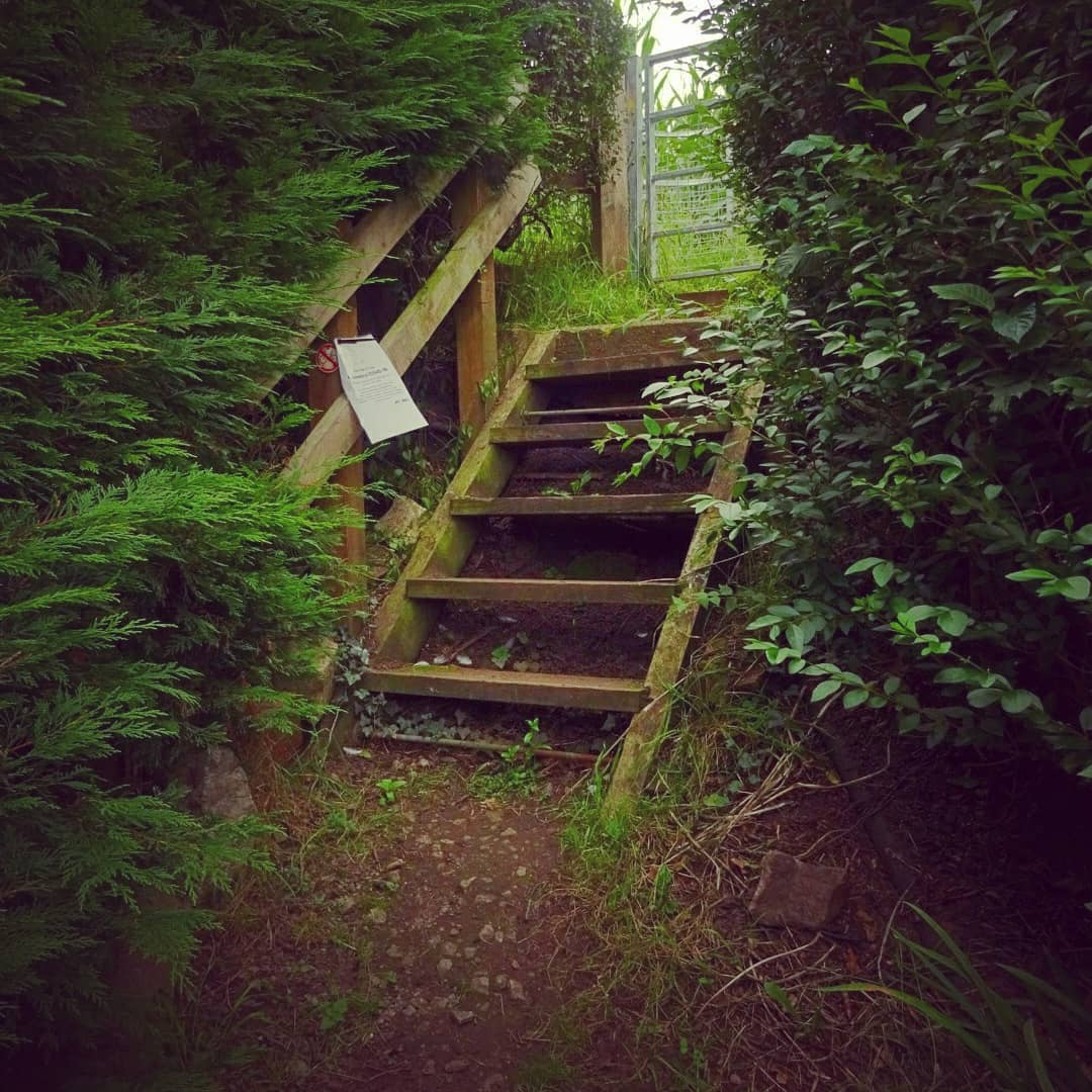 """Turns out I can do a """"Jacob's Ladder"""" walk from my doorstep. So here are some pics from that #walk. I have to say, isn't that the cutest little #JacobsLadder you have ever seen?!  #staycation #travellocal #visitcheshire  @VisitCheshire https://t.co/TUKOhjBszK"""
