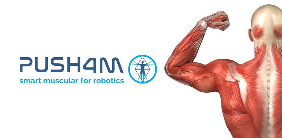 Le #biomimétisme c'est 1 approche qui transpose les mécanismes du vivant vers des applications industrielles. C'est ce que fait @Push4mSas en imitant le gonflement du muscle humain pour répondre aux grands enjeux des profs de la #mécanique & #robotique > https://t.co/e4vFuMHLck