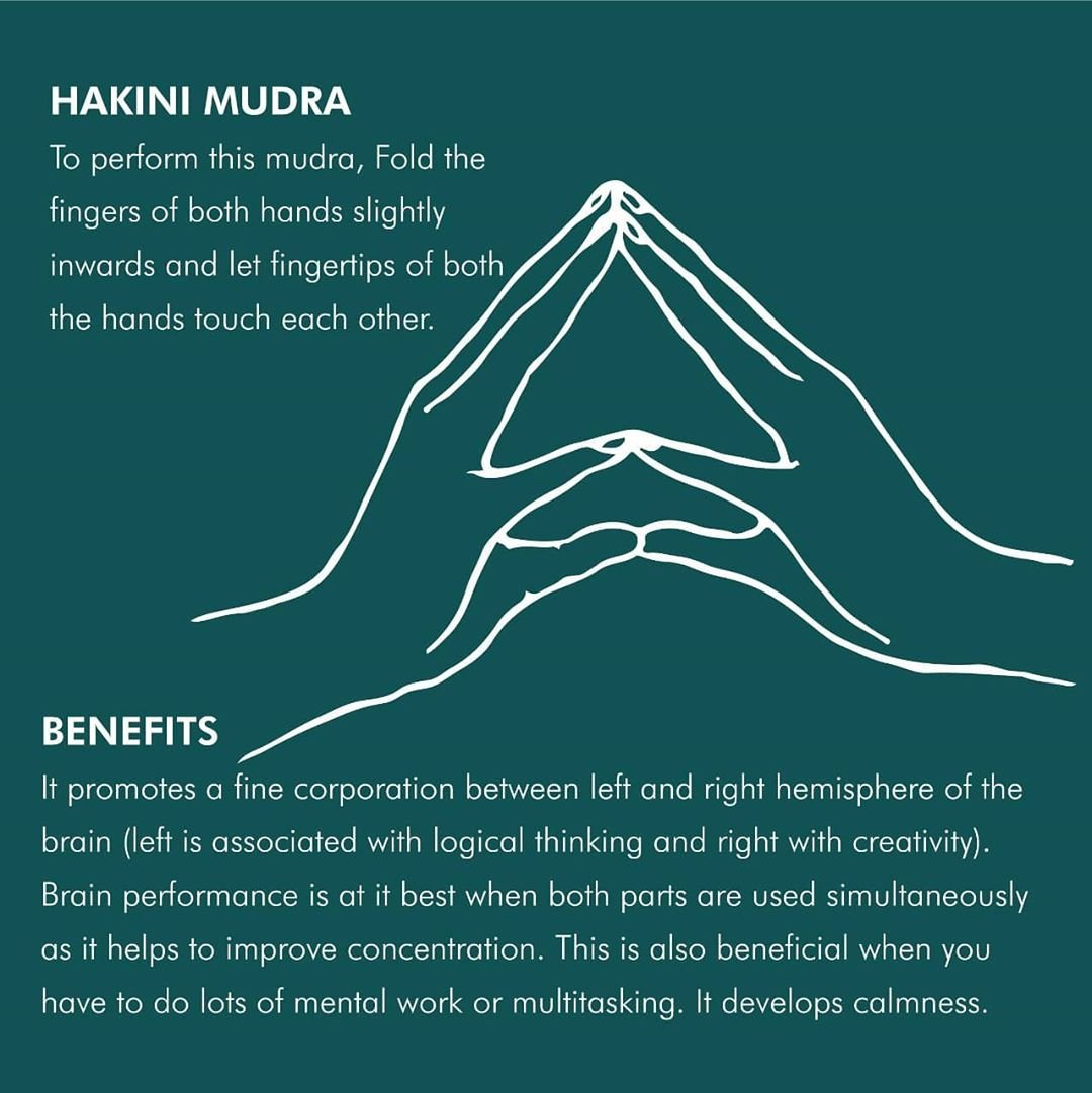 Hakini is a Hindu #goddess who controls the subtle #mind. It presides over Ajna #Chakra our centre of #wisdom and clarity. #HakiniMudra encourages #healing & #harmony at every level of our being – #physical, #mental & #spiritual.  #niraamayaretreats #relax #rejuvenate #rejoice https://t.co/Yd65q6crEG