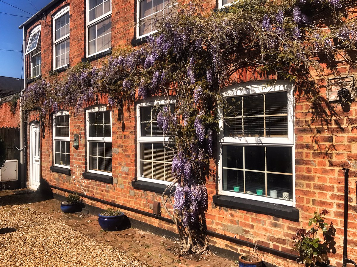 test Twitter Media - Wisteria growing around a house makes the property look picture perfect 😍 This article from @_houseandgarden explains how to grow wisteria: https://t.co/PKBhnF36MM Why not give it a go? The end result is stunning! https://t.co/1q2PVvzVmc