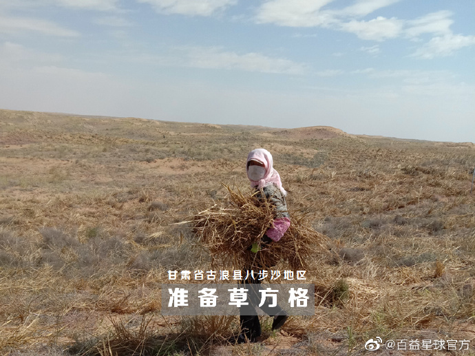"""during the autumn & #winter. It's reported that the local area has made a plan according to the budget & will plant 1,050 haloxylon ammondendron #trees in the designated area in mid-to-late Oct, & the #forest will be named """"#Spotlight Sand Prevention Forest"""". @CBCGDF_China https://t.co/34lfOzg8Cl"""