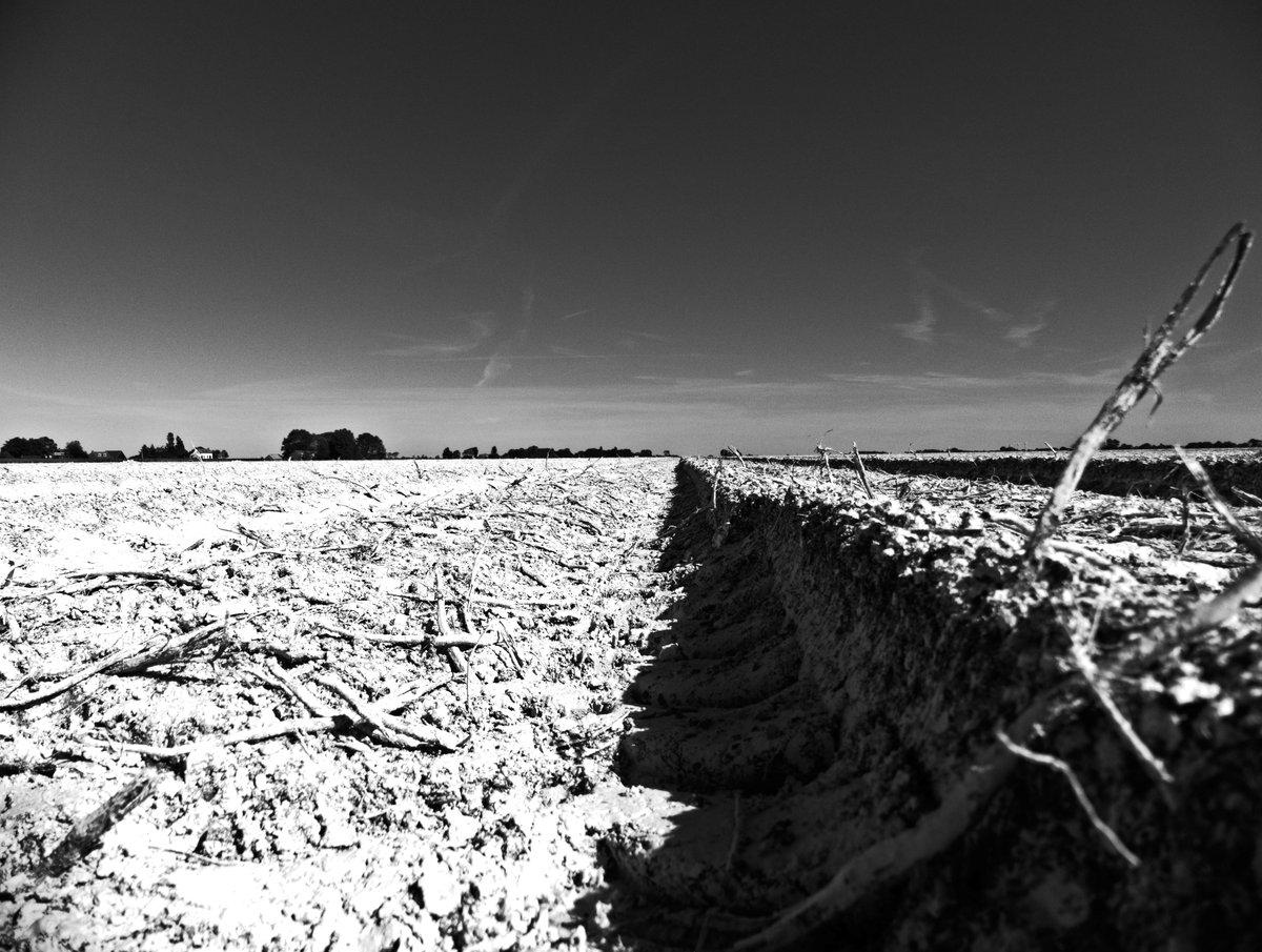 Flatlands. #monochrome #monochromephotography #blackandwhitephotography #blackandwhite #photoart #photography #lumix #panasonic #on1raw #kameraexpress #landscapephotography #landscape #itbilt #flatlands #fields https://t.co/eKKpylUhDN