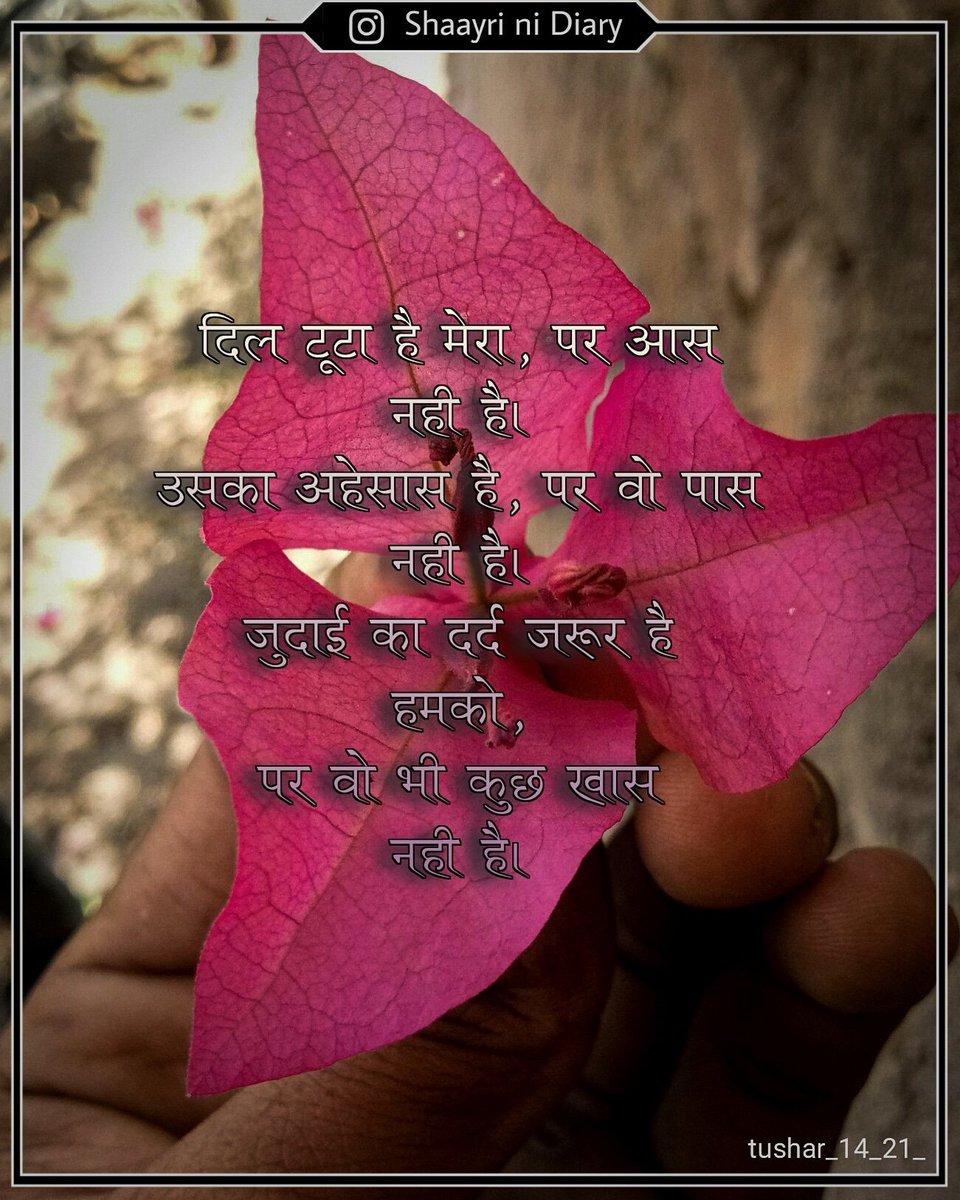 """""""દિલમાં રે તારા, મારુ નામ જો નહી, હમજી લે અમે તને ભૂલી જવાના..""""  . . . . . #shaayri_ni_diary #sayar #shayar #shayari #sayari #hindishayari #hindi #hindi_shayari #instadaily #instagram #ishq #indianshayari #love #breakupshayari #breackup https://t.co/n9BWYt70Go"""