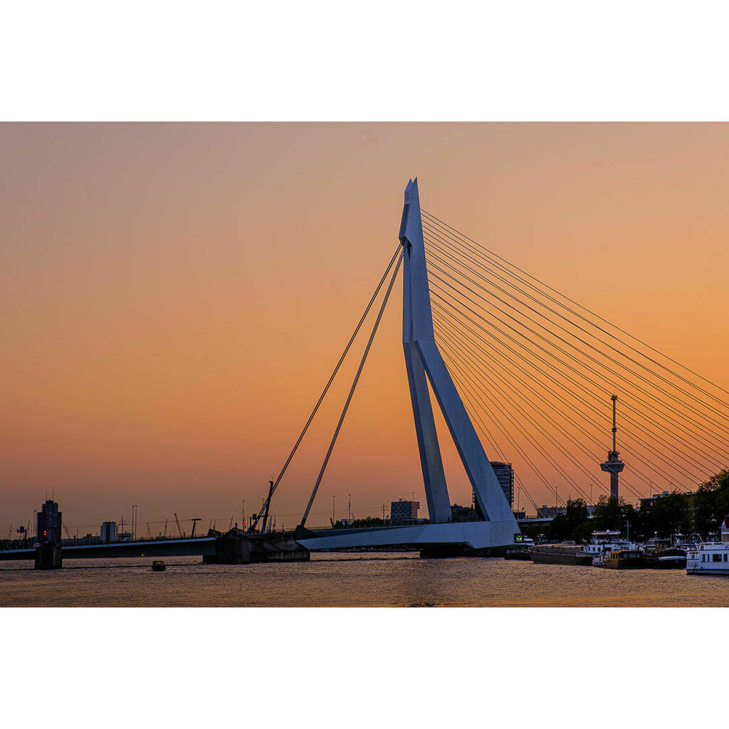 Rotterdam by Night - RPS Night Photography Workshop with Patrick van Dijk. Erasmusbrug, Ben van Berkel (UNStudio). Euromast. - - #architecture #bridge #city #cityscape #dusk #dutch #goldenhour #light #lines #night #orange #red #river #Rotterdam #street #… https://t.co/4vF5T2m4yx https://t.co/m8BMe2J5Im