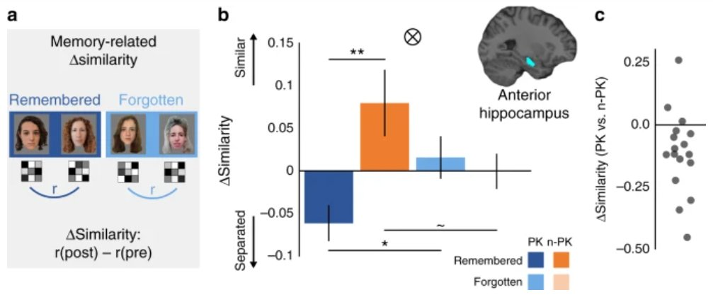Prior knowledge impacts new learning. How does it influence the representation of novel information? Here, the authors show that prior knowledge leads to integrated cortical representations and promotes hippocampal separation. #neuro @OdedBein @NivReggev https://t.co/GeJmSwIVKl https://t.co/aScTnnXdbF