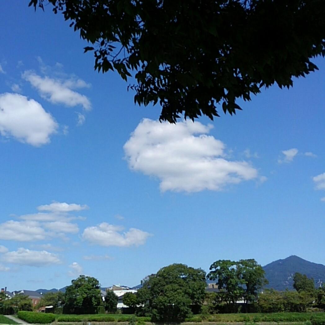 カラッとして風が気持ちいい。 「🐱外出られへんし爪研ぎしとこ❗」 七宝焼でアクセサリーを制作販売中。 https://t.co/p5IHAbPglh https://t.co/sIp0aTlaQC #賀茂川 #比叡山  #ねこのきもち #七宝焼き https://t.co/56yb8JAW9d