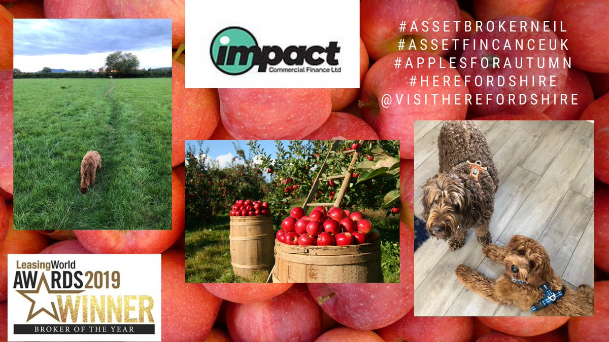 Loving this new campaign #HerefordHour from @orphansstudio  'Apples for Autumn'  celebrating Herefordshire's rightful place as the home of #apples & #cider. Welcome #herefordshire #visitors #applesforautumn @visitherefordshire https://t.co/JrU4SuMFFe