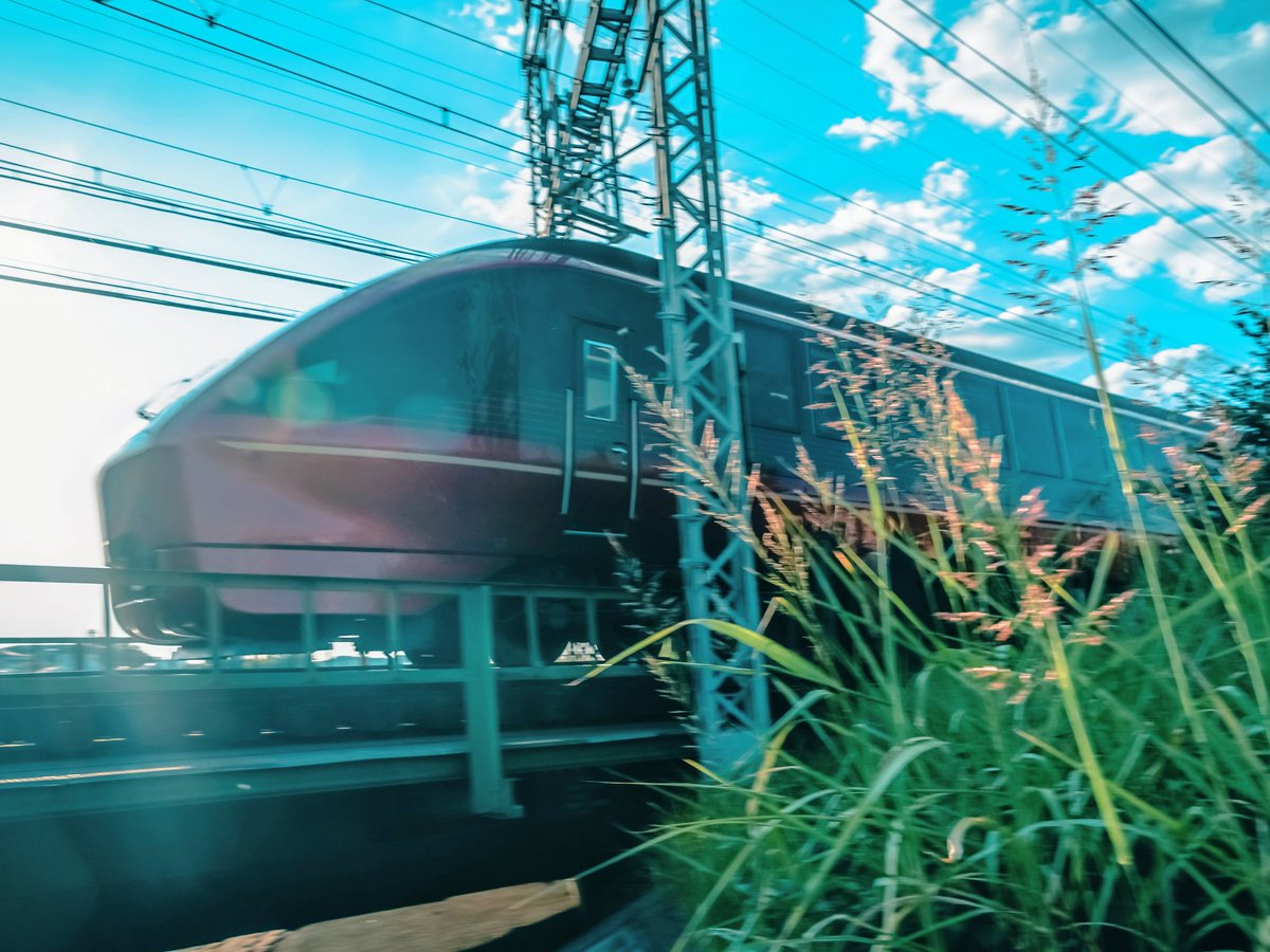 #ひのとり 突然草むらから火の鳥が飛び出してきた!  #α6300 #sony  #ファインダー越しの私の世界 #キリトリセカイ #関西カメラ部 #trainphotography #kintetsurailway #railway #railwayphotography #trainstagram #railways_ig https://t.co/jFnr0uQkR5 https://t.co/u2ifFscJch