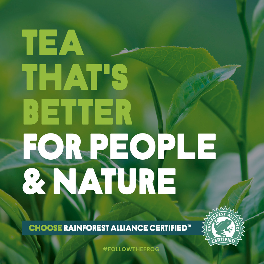 We proudly #FollowTheFrog to support a better future for people and nature, by sourcing @RnfrstAlliance Certified goods. Why do you #FollowTheFrog?  @RnfrstAll_UK https://t.co/cGkbry8kd7