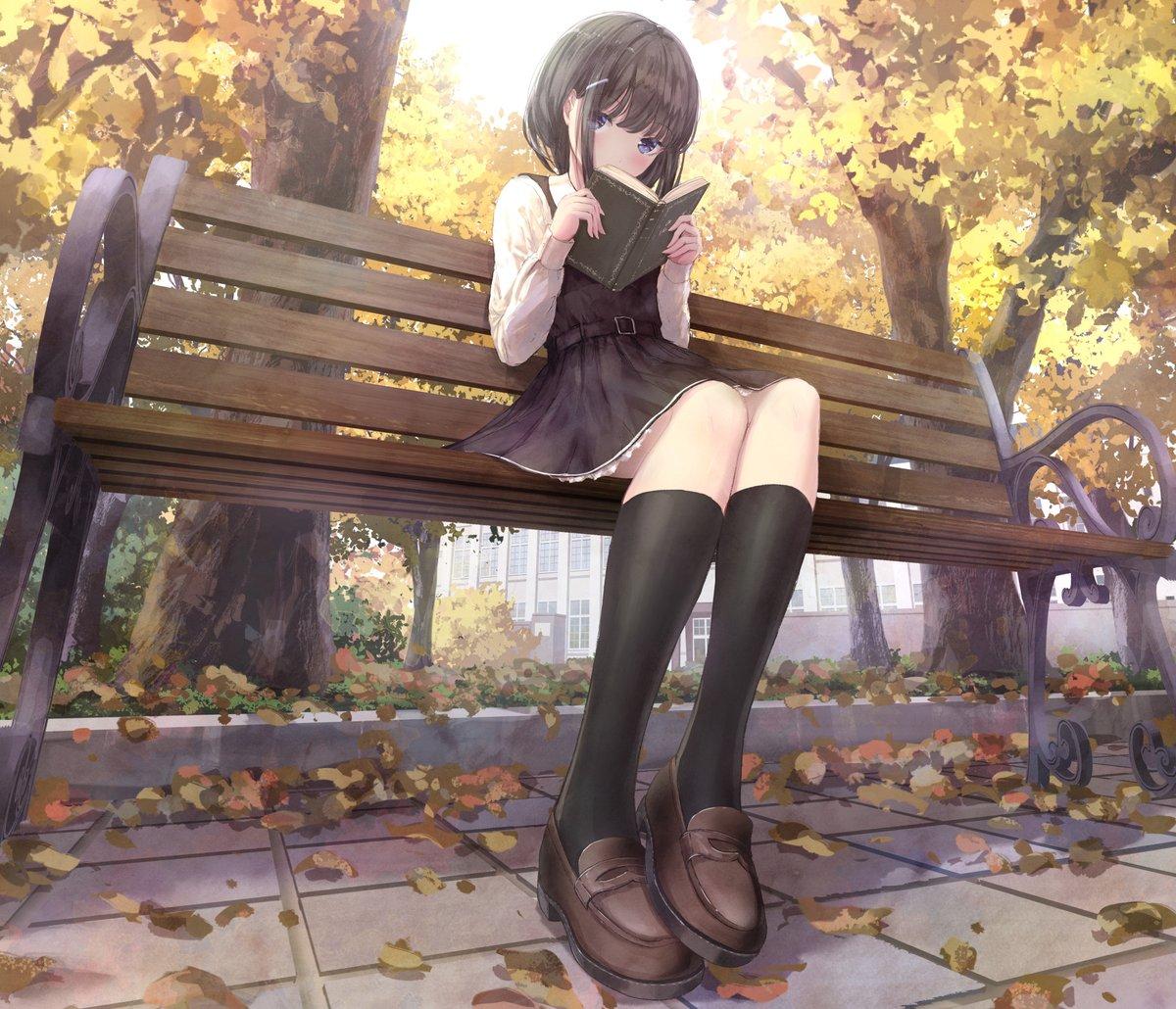 野良猫視点の読書の秋