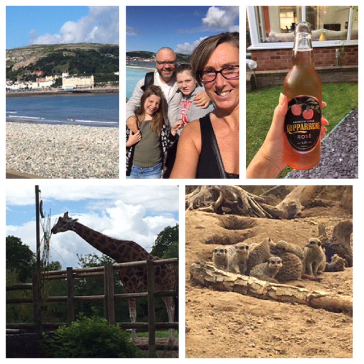 @GaryBarlow lovely time with my bubble #family #happytimes @chesterzoo #llandudno #cheekybeer https://t.co/4qF4zP9RPz