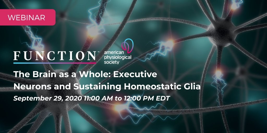 """Join @APS_Function's next webinar, featuring discussions with Carl Petersen and Alexei Verkhratskyby on """"The Brain as a Whole: Executive Neurons and Sustaining Homeostatic Glia."""" Register today: https://t.co/ibXDZLPQ88 @APSPublications @APSPhysiology #FunctionJournal https://t.co/zFAl9iywdG"""