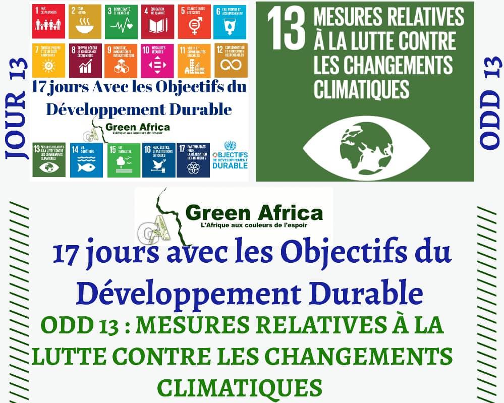 #Day13 #ODD13 #GreenAfrica #SDGs  @madlove_love @GeraldKutney @GretaThunberg @NdoMartine @onjolo_kenya @EWestaway @endelstamberg https://t.co/nJfakp0I3b