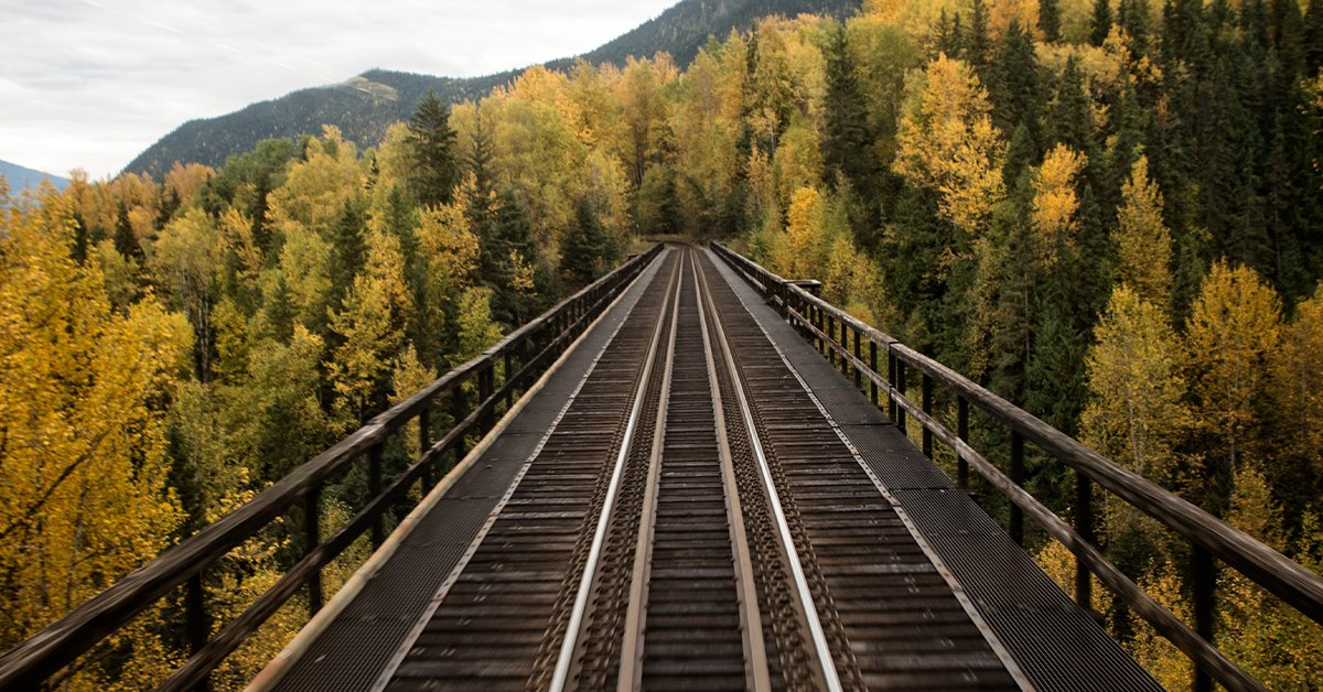 VIA Rail is proud to once again partner with Operation Lifesaver Canada for #RailSafetyWeek. We'll be sharing tips and tricks on how to be safe around tracks, because one track tragedy is one too many. Visit https://t.co/6d8Wd2UQk1 to find out more. #STOPTrackTragedies #rsw2020 https://t.co/EgM7tbCCwS