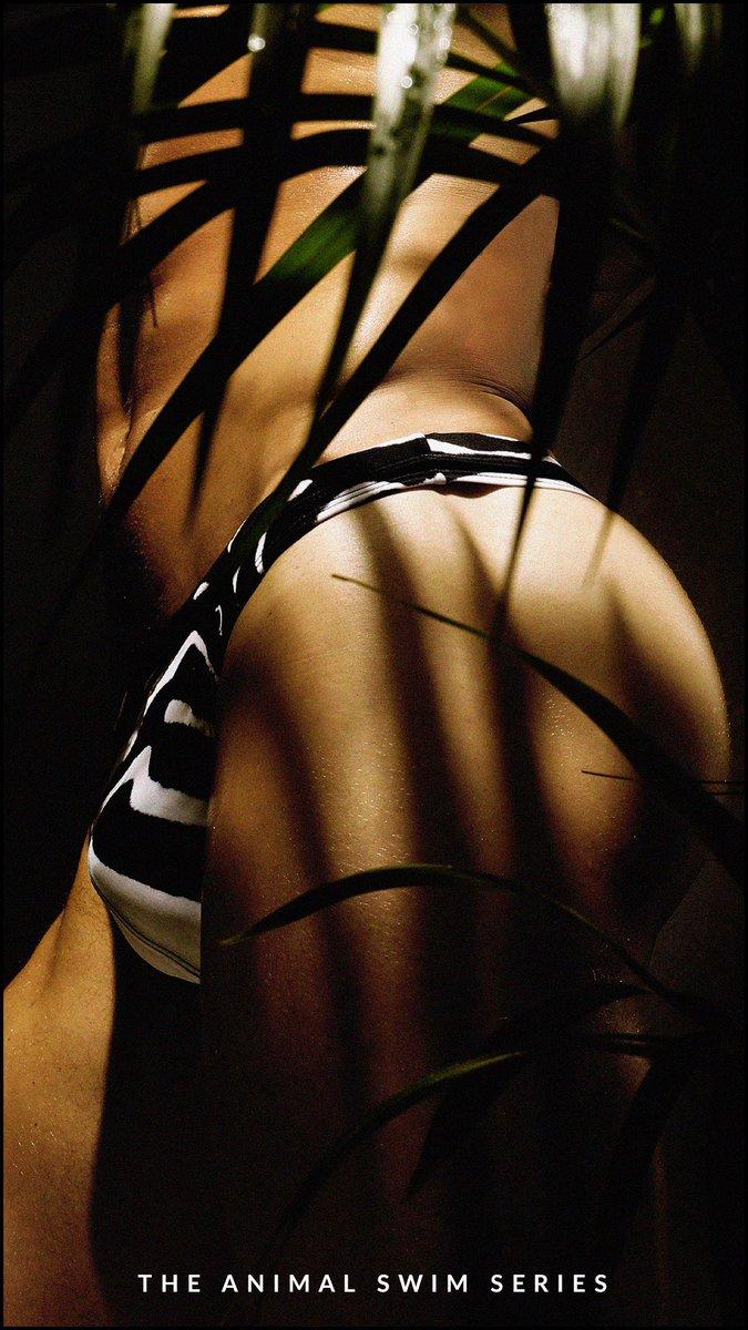 GO WILD. The Charlie Animal Swim Series. SHOP NOW Exclusively at https://t.co/KkePkfVjnC. #Charliebymz#charliefan#forevercharlie#charlieswimwear #mens #swim #thong #animal #blackpanther #jaguar #zebra #swimthong #swimbrief #brief https://t.co/40DZJiBrQB