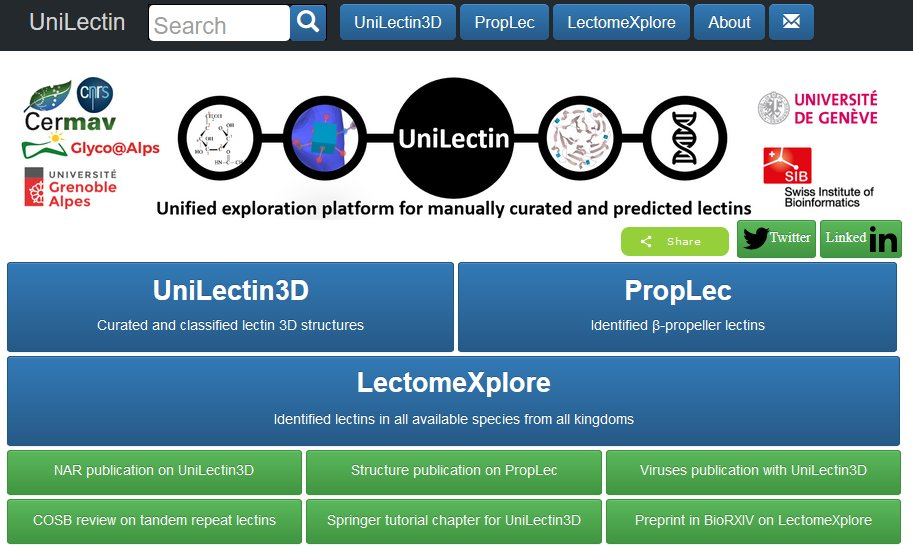 LectomeXplore is now available on https://t.co/nkjlcGgD6I database Check if your favorite species has lectins !! 487.000 lectins identified in 17.000 species @AnneImberty @GlycomicsExpasy @Glycopedia  Please share, feedback is always welcome for further improvement https://t.co/USyEP1jyAj