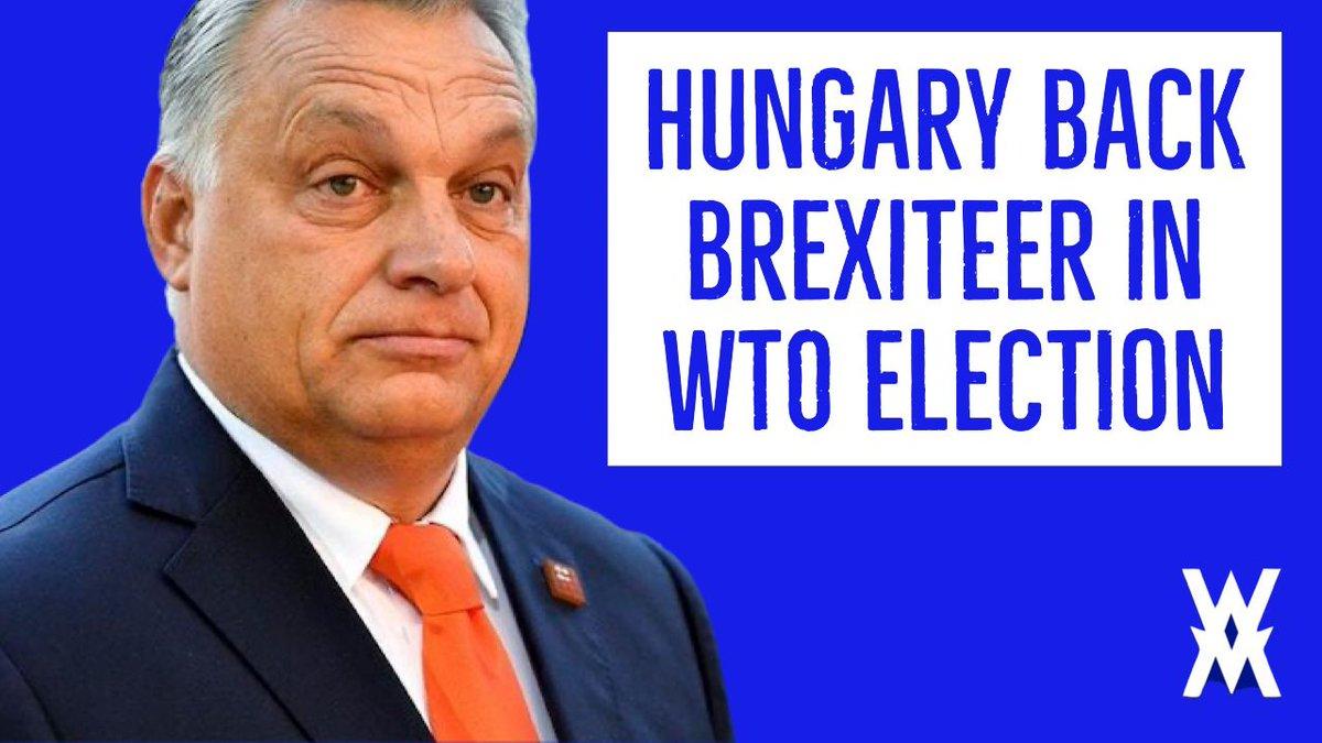 EU split as Hungary break ranks to back Brexiteer Liam Fox to become WTO chief: https://t.co/a2sSjc2gYB https://t.co/yKmlFUKy0e