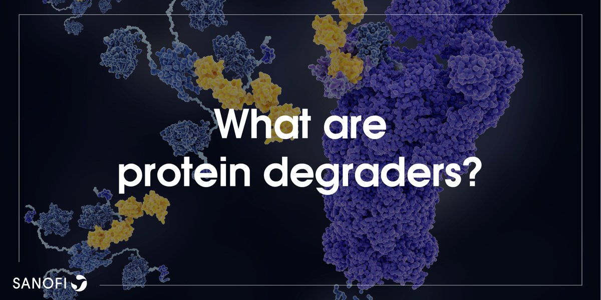 How do protein degraders take advantage of the body's recycling machinery, and could they help Sanofi scientists target tumors? Find out in this short audio overview: https://t.co/BWud7YvODU #oncology https://t.co/0bfmVAgLco