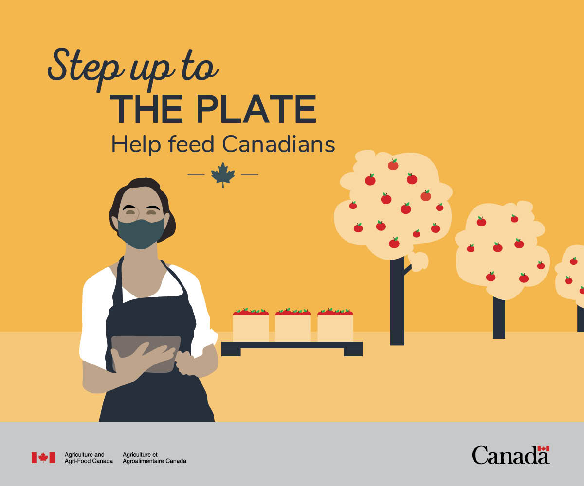 Are you looking for work? #CdnAg needs help with this year's harvest! Step up to the plate🍽️ and help keep food on 🇨🇦 tables: https://t.co/cAW7oquRcF  #COVID19 https://t.co/sht4GkD4tm