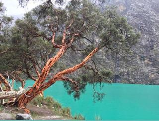 Laguna 69 #Huaraz #skyblues #Lagoon #landscapephotography #warotours #MotivationMonday #travelphotography #Peru #nofilter #BuenLunes #NoteQuitesElTapabocas #iniciodesemana #Primavera https://t.co/H6KRFKwMZv
