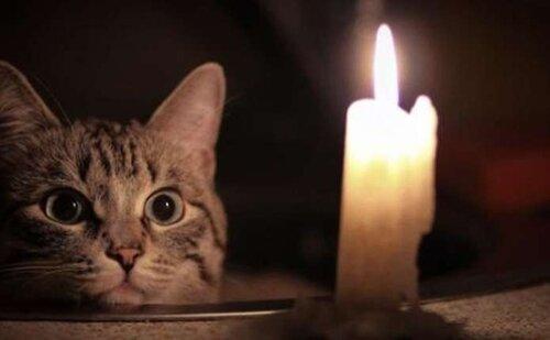 Де у Луцьку та районі не буде світла 22 вересня https://t.co/H5Ric6jAa9  ПрАТ