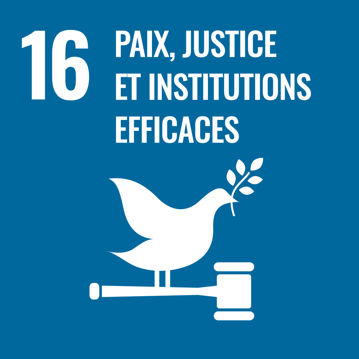 En tant que coprésidents du @IntDialogue, 🇨🇦 & 🇸🇱 rassemblent les pays pour discuter de la réponse à la #COVID19 et promouvoir la consolidation de la paix, et collaborent pour faire progresser les objectifs communs, dont l'égalité des genres et la prévention des conflits. #ODD16 https://t.co/MDPyoTShDk