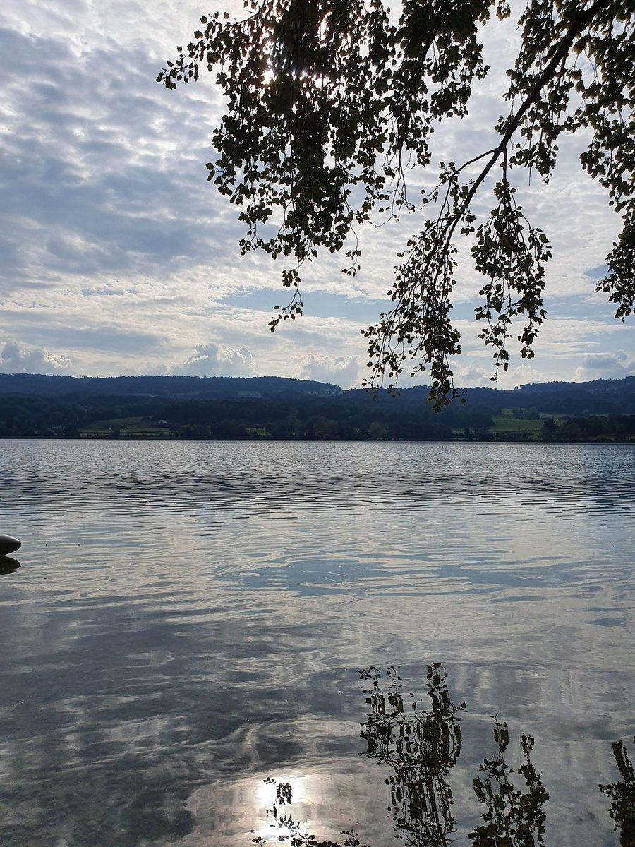 Wenn man am Ufer sitzt und die Wolken und die Sonne sich im Wasser spiegeln. https://t.co/2R1TUfgIwq