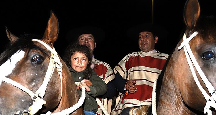 José Antonio Bozo: Nos cundió harto la pega con caballos nuevos durante el receso #QuédateEnCasa https://t.co/KCd0HAUHQf https://t.co/3fGIcZNyUx