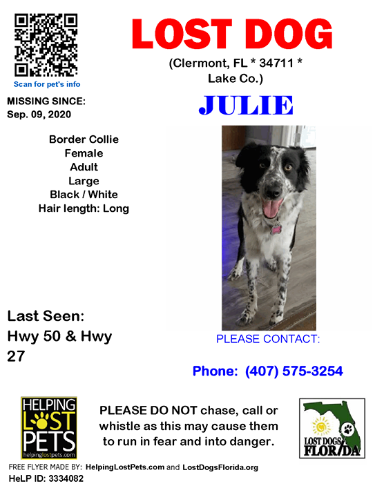 Julie is lost!  Have you seen her?  #LOSTDOG #Julie #Clermont (Hwy 50 & Hwy 27)  #FL 34711 #Lake Co. , #Lost #Dog 09-09-2020!, Female #BorderCollie Black / White/Julie was wearing her brown plaid collar with a pink dog bone tag with my name, address and phone.   CONTACT Phon… https://t.co/2okYCExL81