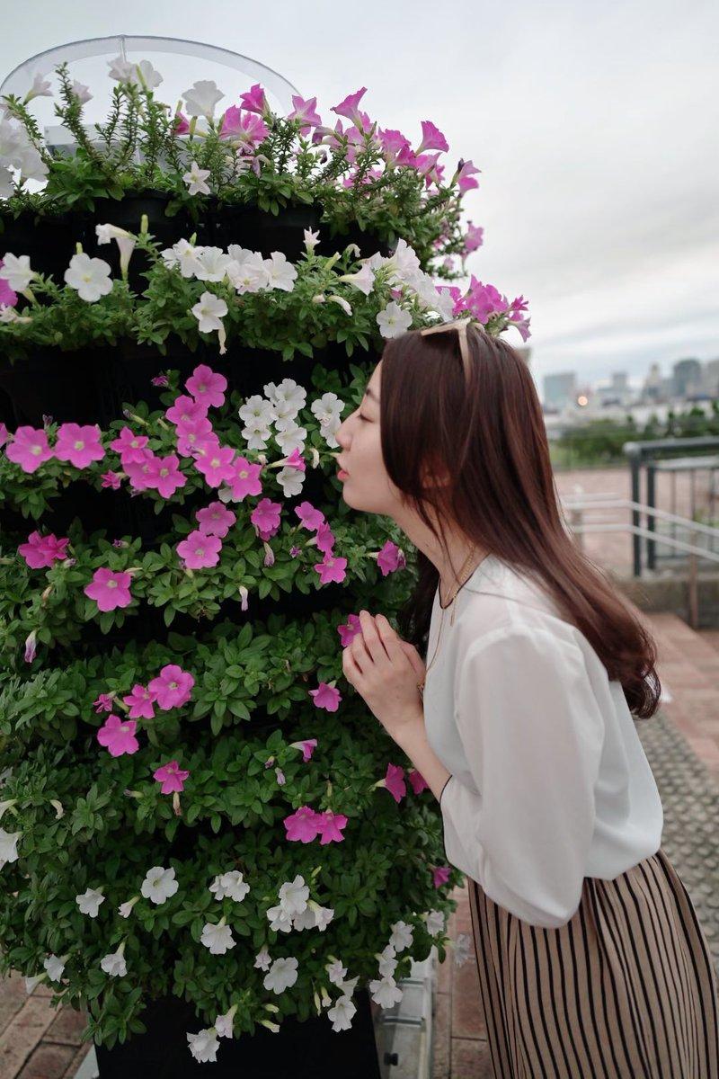 おはよう💋愛は愛を生む。今日も、皆さまにとって素敵な1日になりますように💐#心に花束を #名言 #ことわざ #撮影会 #モデル #被写体 #ポートレート #グラビア #花 #歌謡 #エンタメ #LBバービーズ #麦酒里栄 #黄色 #関西 #出身 #兵庫県 #はばタン