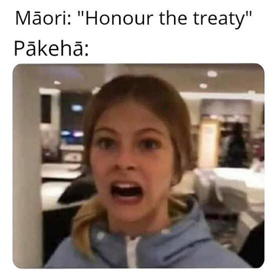 So this country makes it hard as hell to learn Maori but it's okay to have a language week for Chinese bloody government hypocrites when did Chinese become the national language of New Zealand in my understanding it's English, Maori and sign language. https://t.co/mMy4N0Z0gh https://t.co/wfsakN72Mu