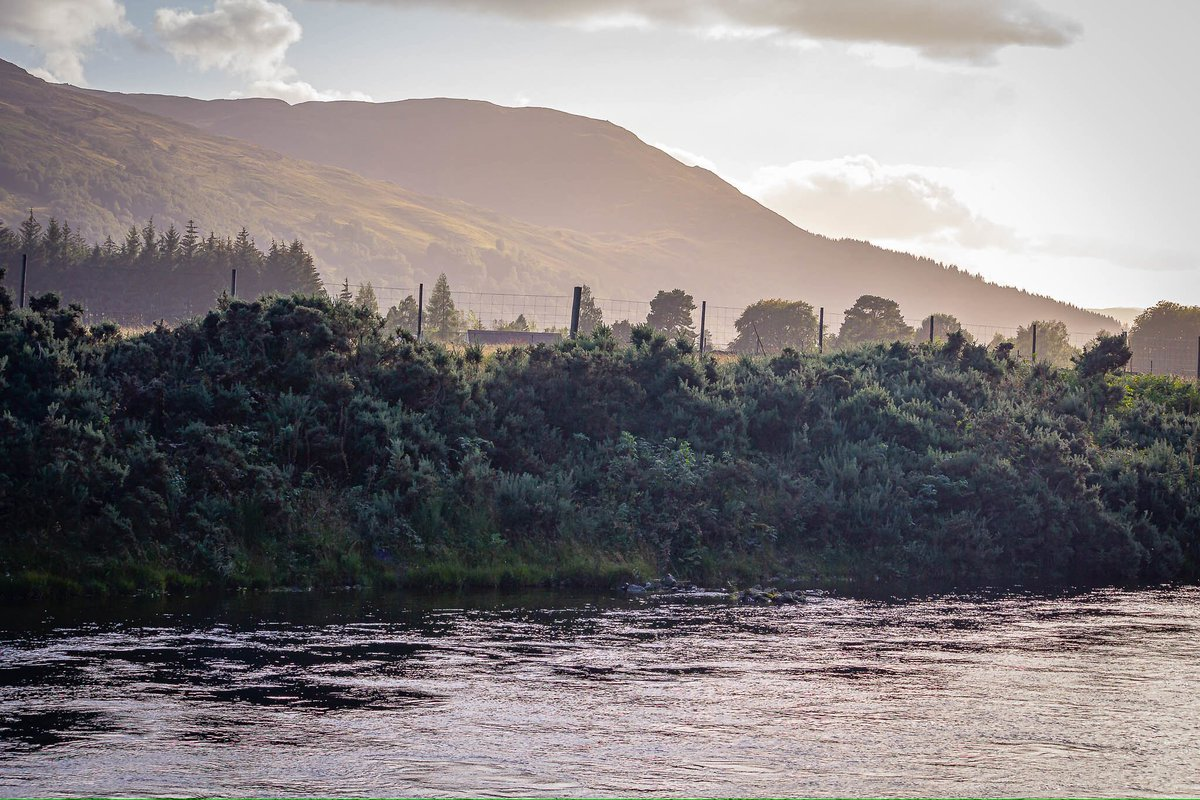 Beautiful tranquil view across the Rivel Tummel outside Kinloch Rannoch - Sept 2019 #RiverTummel #KinlochRannoch #SelfGuidedWalk #AutumnSun #Memories #NaturalView #MentalSoothing #Scotland https://t.co/WBujqwCRgM