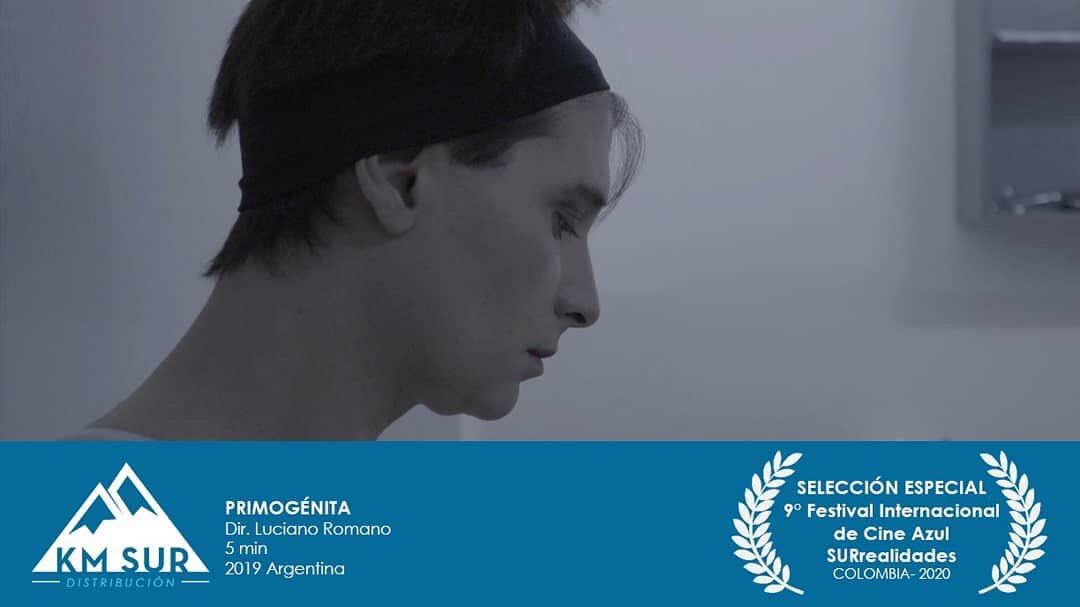 Vamos que seguimos! @kmsurdistribucion #Primogénita de Luciano Romano forma parte de la #SelecciónOficial del 9° Festival de cine SURrealidades de Colombia! @surrealidadescineazul  #cineargentino #lgtb #cineindependiente #festivaldecine #filmfestival #shortfilm #firstborn https://t.co/pQQeyc0ZfH