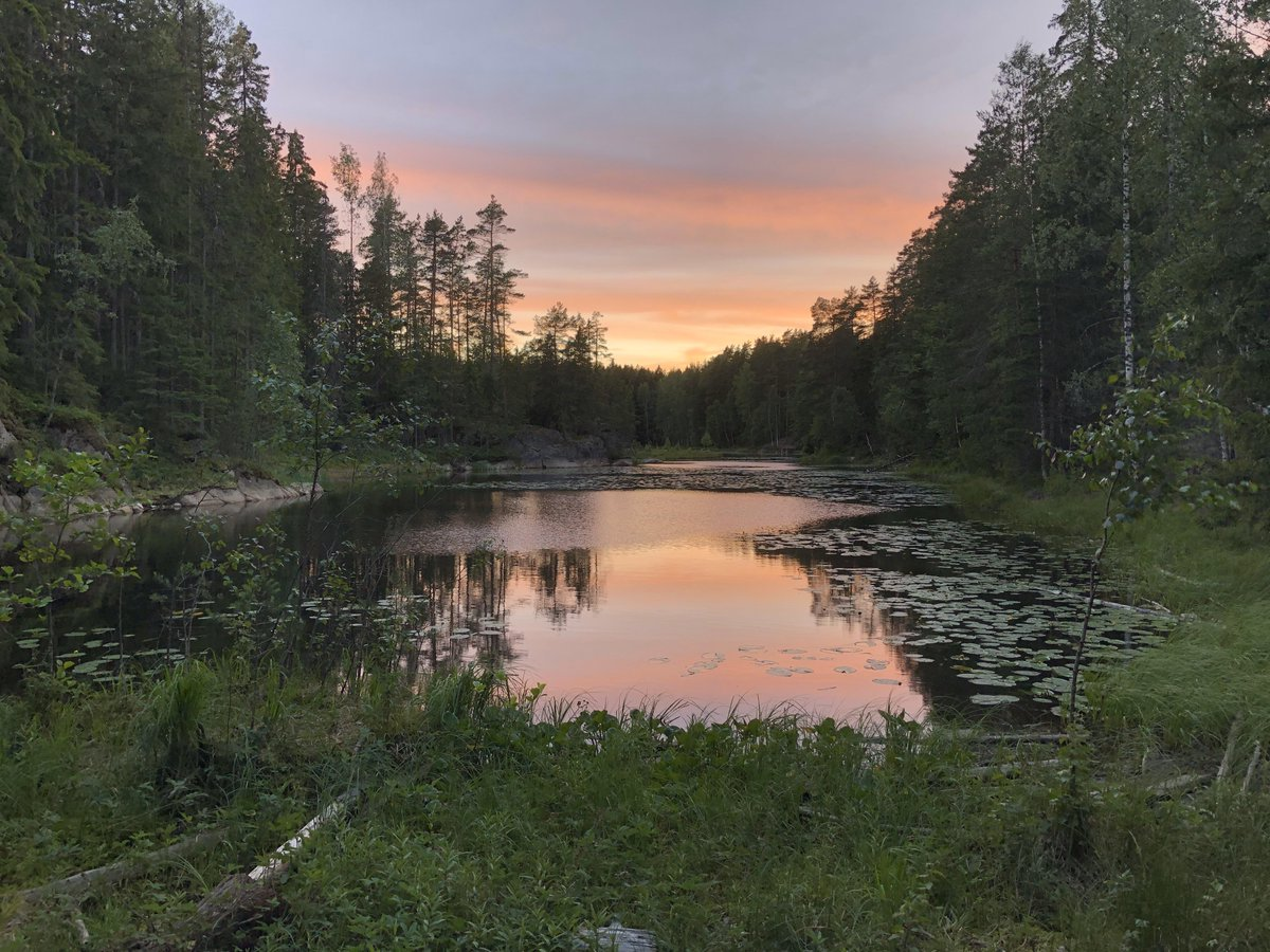 A lake I camped at for a night in Finland last year when backpacking through east Europe and Scandinavia. From u/setonix7 on Reddit #finlandlastyear #easteurope #scandinavia #night #lake #camped #backpacking https://t.co/RlKbDrCq2y