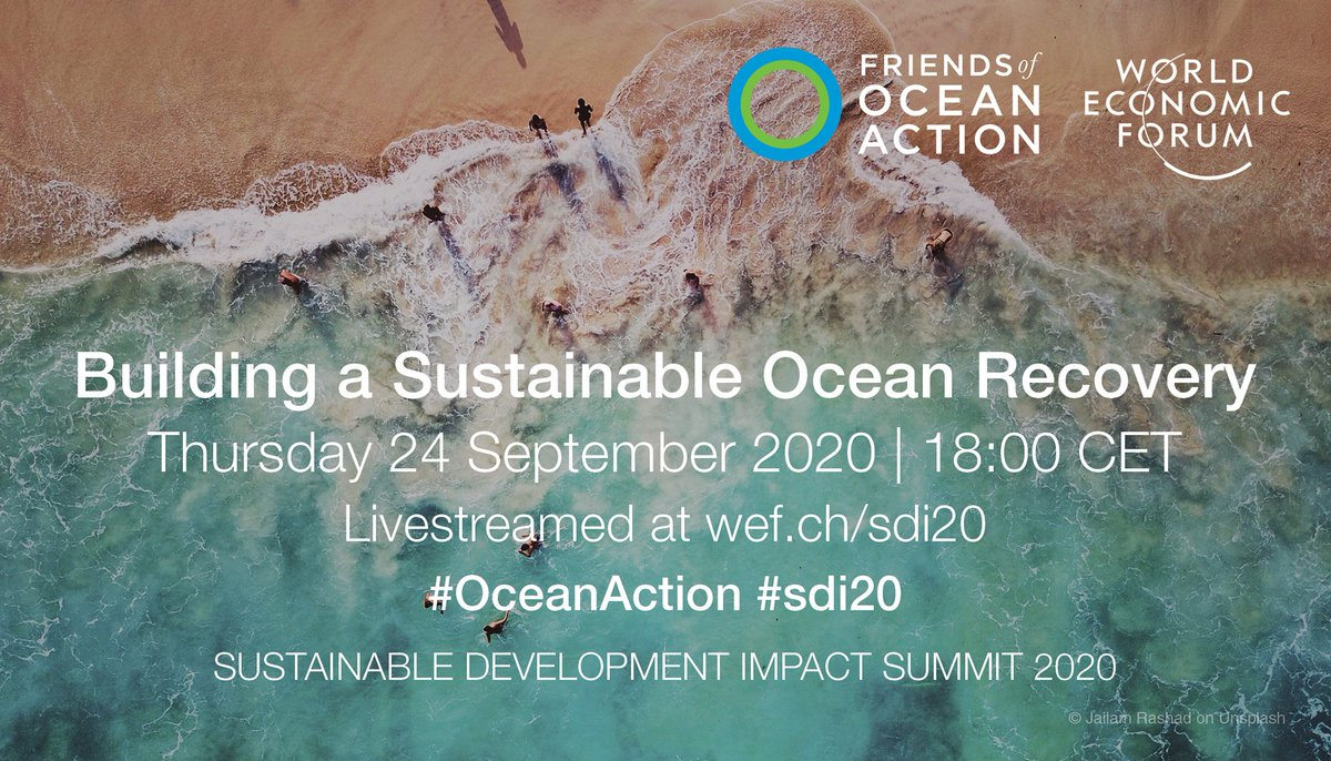How can we advance ambitious, #sustainable solutions for a healthy #ocean that play an integral part in global response & #recovery from #COVID19? Tune in this Thursday at 18:00 CET for 'Building a Sustainable Ocean Recovery', part of @wef #sdi20! 🐟🌊⛴️👉 https://t.co/0pW3D4qWSX https://t.co/dVAG9MYCL4