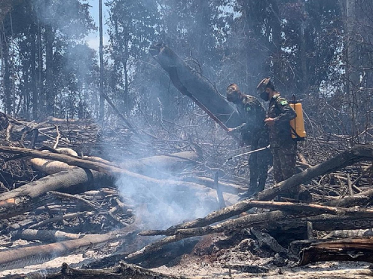 Militares do 51º Batalhão de Infantaria de Selva combatem focos de incêndio e fazem reconhecimentos em pontos de calor https://t.co/mOTu3f3aKm #BraçoForte #MãoAmiga https://t.co/6ka1pEsBki