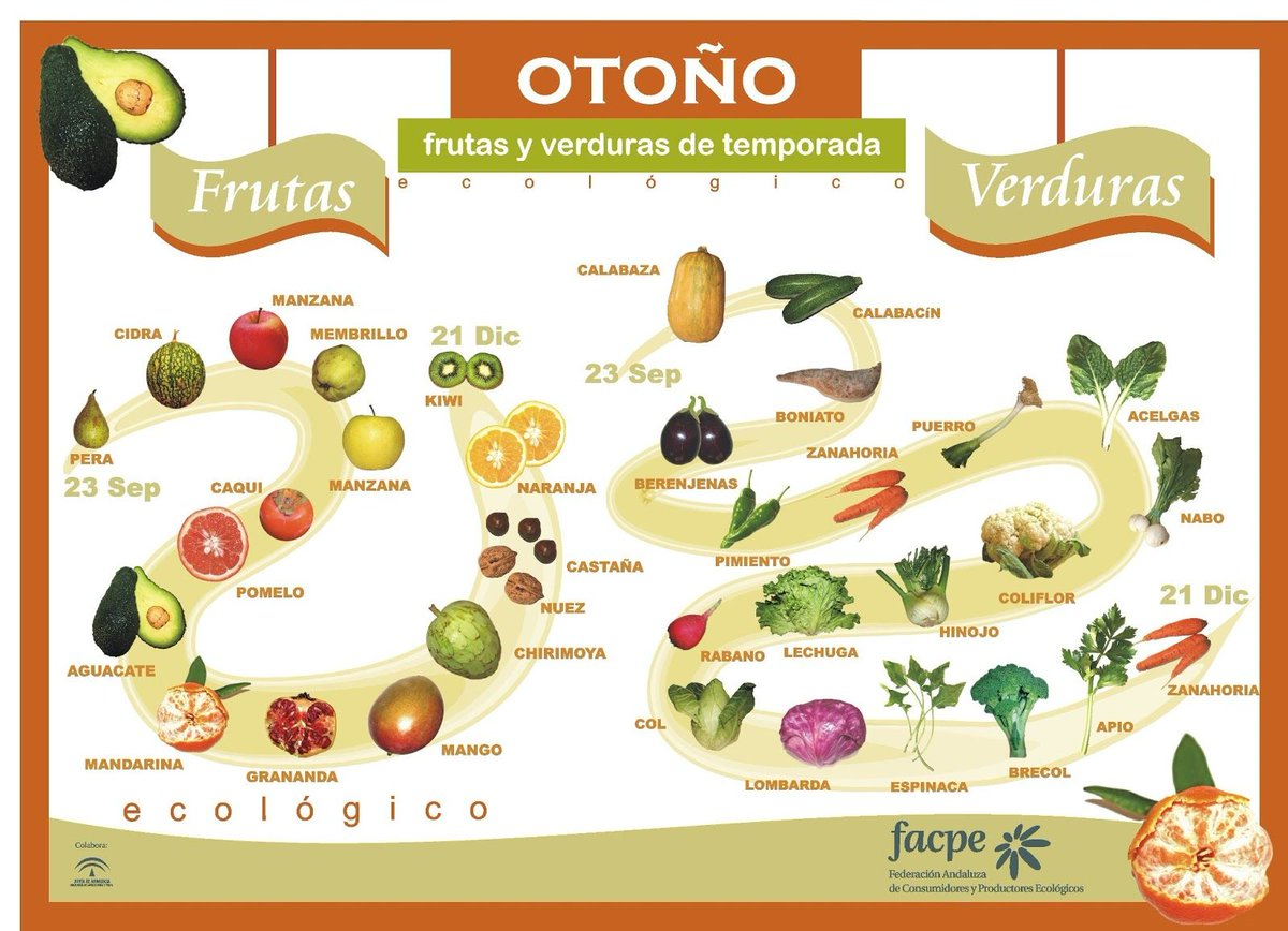 🍂Comienza el #otoño   🍆🥦¿Sabes cuáles son las frutas y verduras de temporada?🥕🍏  Los productos ecológicos de temporada son más saludables y nutritivos porque contienen menos agua y más vitaminas, minerales y fitonutrientes.  #AlimentaciónEsSalud #Otono2020 #agroecología https://t.co/IHwOplwuON