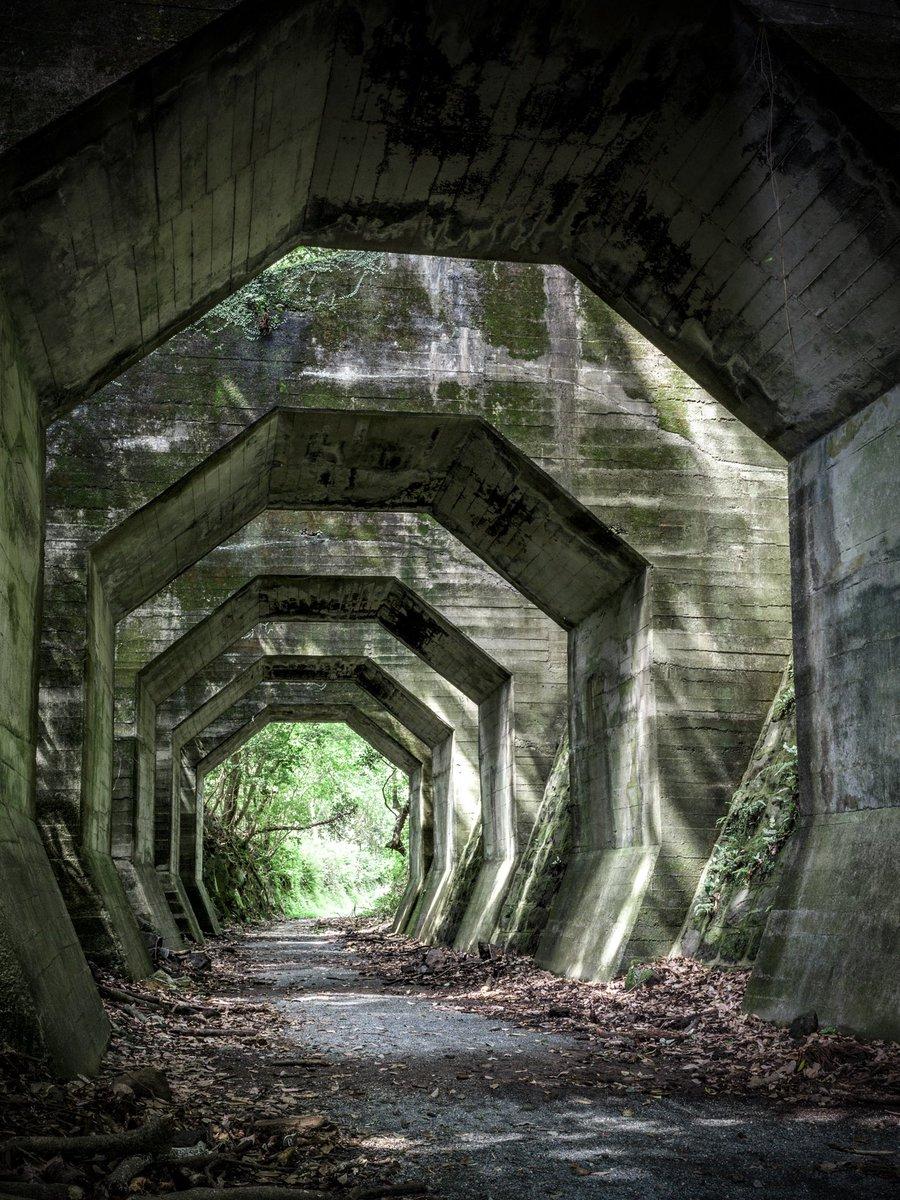 八角トンネルという謎の遺構。7基連続した落石を防止する為の洞門だが、何故にこの形が採用されたのかはよくわかってないらしい。昔はこの中を鉄道が走っていた。