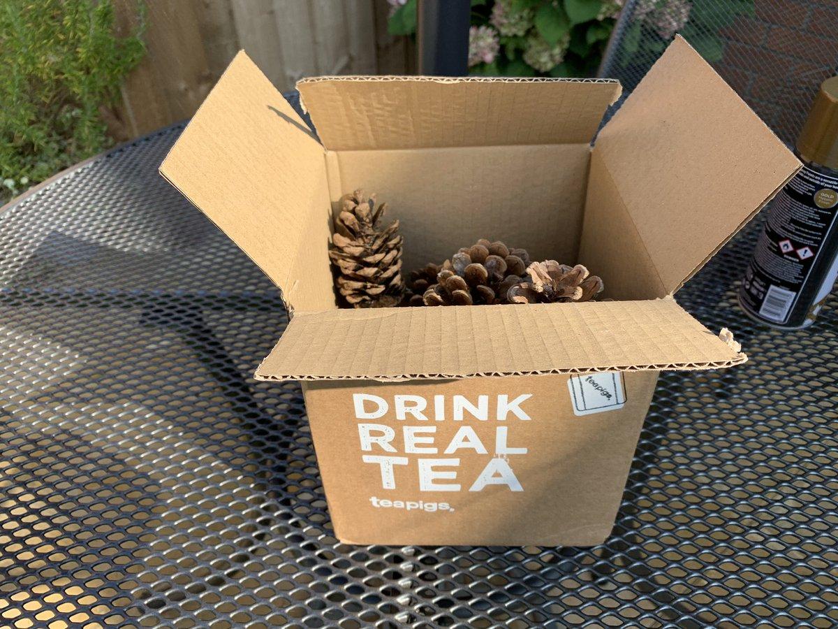 @teapigs use your cardboard box again, so I turned into a spray booth! https://t.co/UMeuZVOG3E