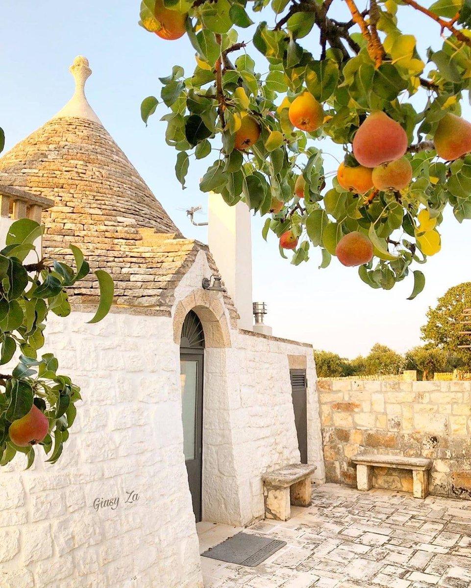 Inizia la stagione delle #ripartenze e dei #colori, che mescolandosi alle forme e ai profumi di fine estate, diventano sempre più caldi e intensi.  😷 Visitare la #Puglia, la #ValledItria e #Locorotondo in #sicurezza si può ed è importante. https://t.co/CNVTXgtYnF