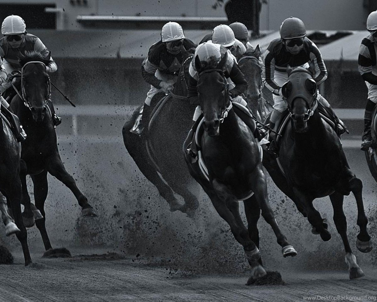 If you are into #HorseRacing, sign up today to bet FOR or AGAINST any horse: BACK / LAY bets available on our #bettingexchange product >  https://t.co/MgpWtDQoXp     #bettingtips #racing #RoyalAscot #scommesse #apuestas #stoixima #betting #bukmacker #wetten #bahis #sportwetten https://t.co/VDblqr0E5J