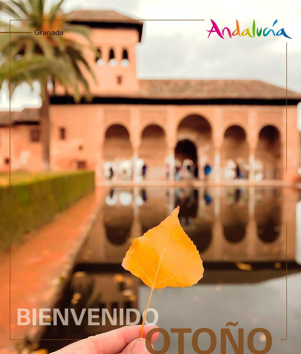#ViveAndalucia | ¡Hoy damos la bienvenida al otoño! 🍂  Una estación en la que el color dorado de los atardeceres y de las hojas de los árboles es el protagonista. Disfrutemos de esta estación como sabemos hacerlo en Andalucía, ¡intensamente! 💛 #Otoño https://t.co/0zPwPQNpL7
